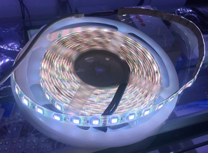 5050_SMD_RGBW_LED_1