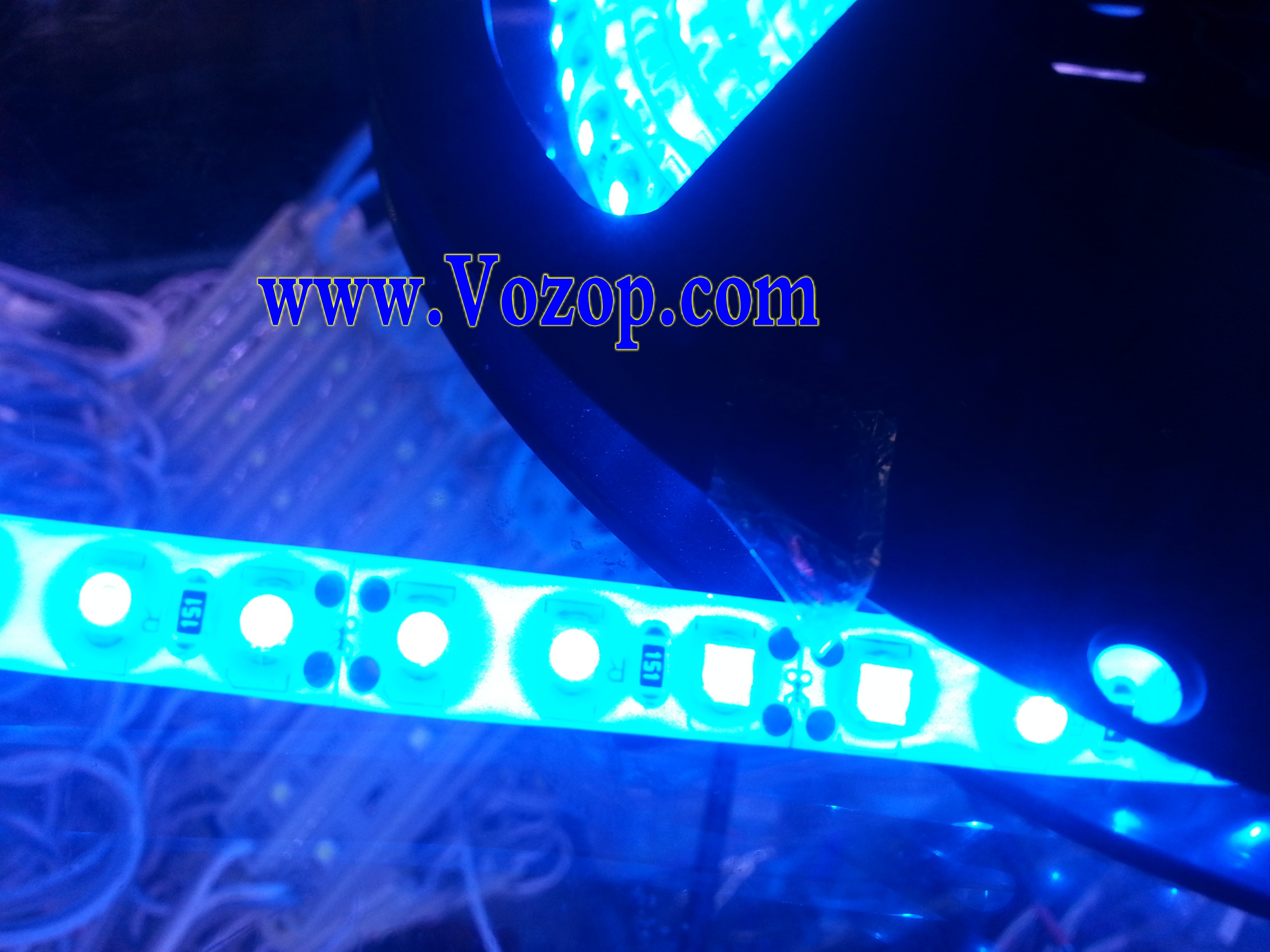 Flexible_LED_Strip_Blue_SMD_3528_600leds_per_5_meters
