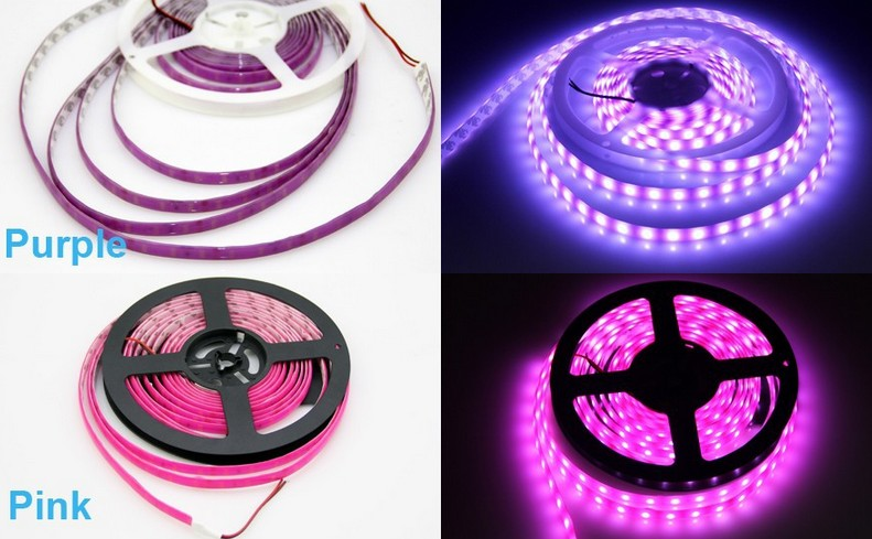 Neon_LED_Strip_5050_12V_5M_Fluorescent_Light