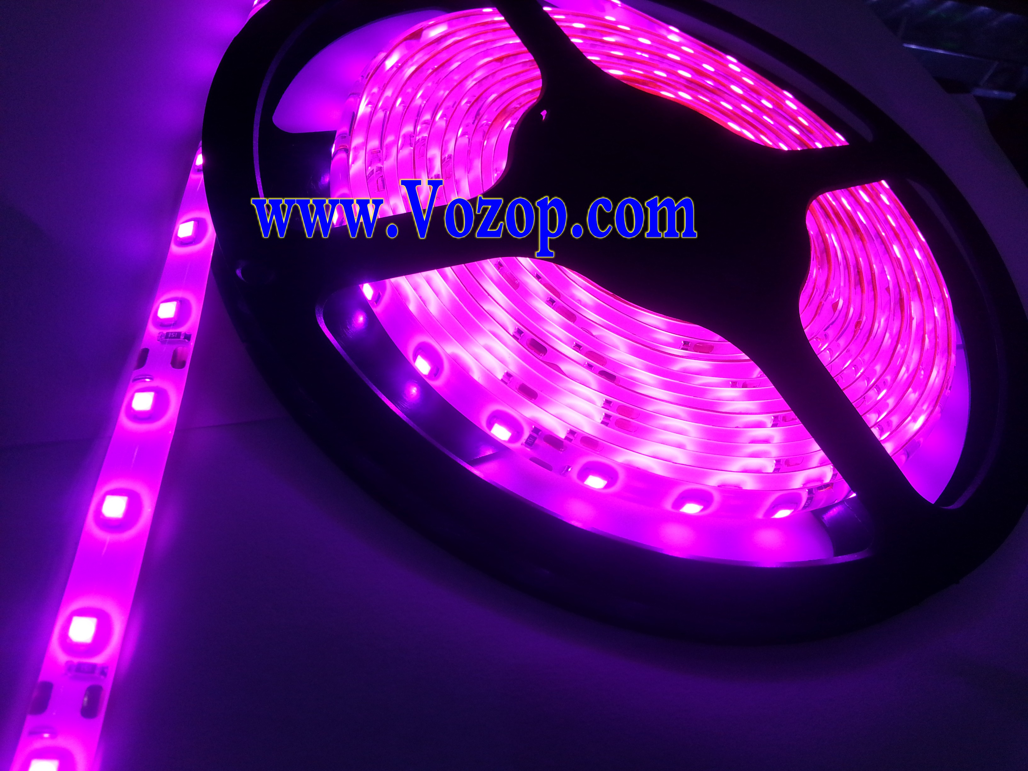 12v smd3528 led light strip 5m 300 leds waterproof ribbon led strips led controllers led. Black Bedroom Furniture Sets. Home Design Ideas
