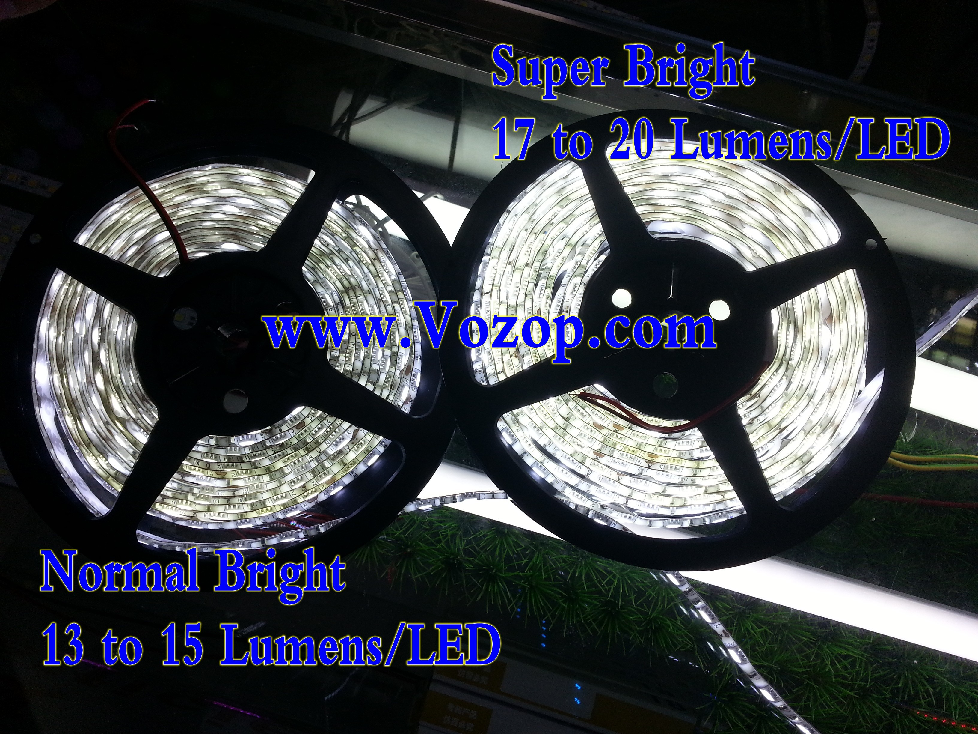 Ultra_Bright_SMD5050_5M_300_LEDs_Pure_White_12v_LED_strip_Lights_Waterproof
