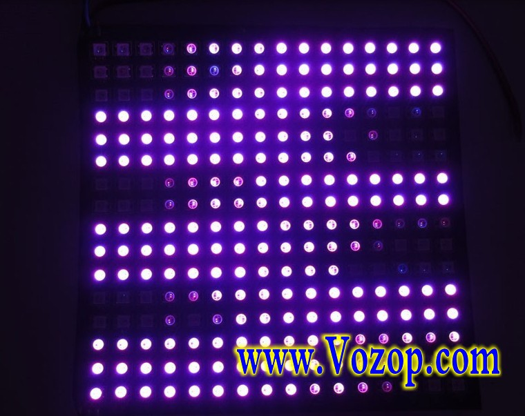 WS2812B_Addressable_LED_Panel_256_Pixels_Lights_factory_sale