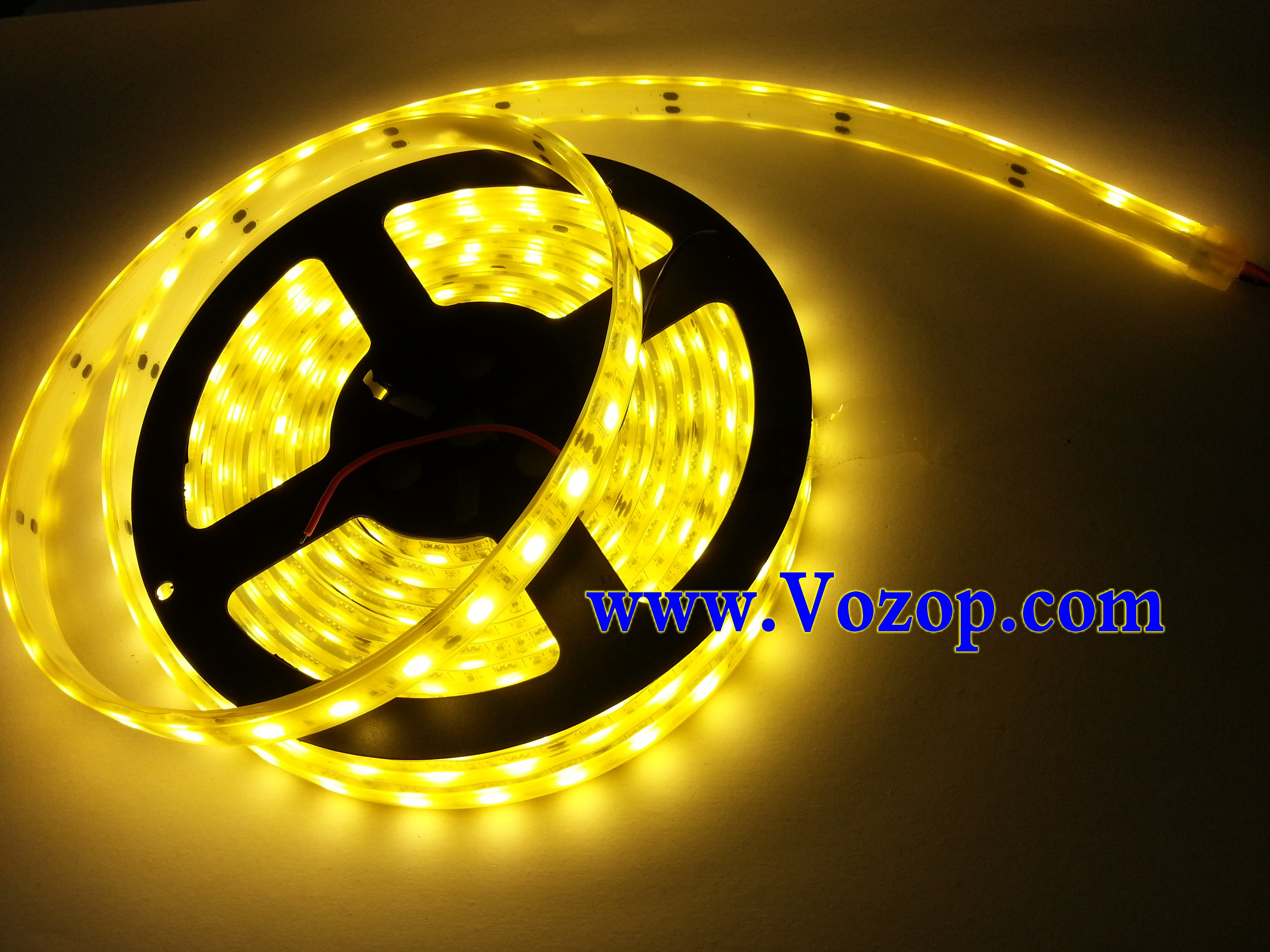 Warm_White_5050_60LED_Underwater_IP68_Waterproof_LED_Light_Strip