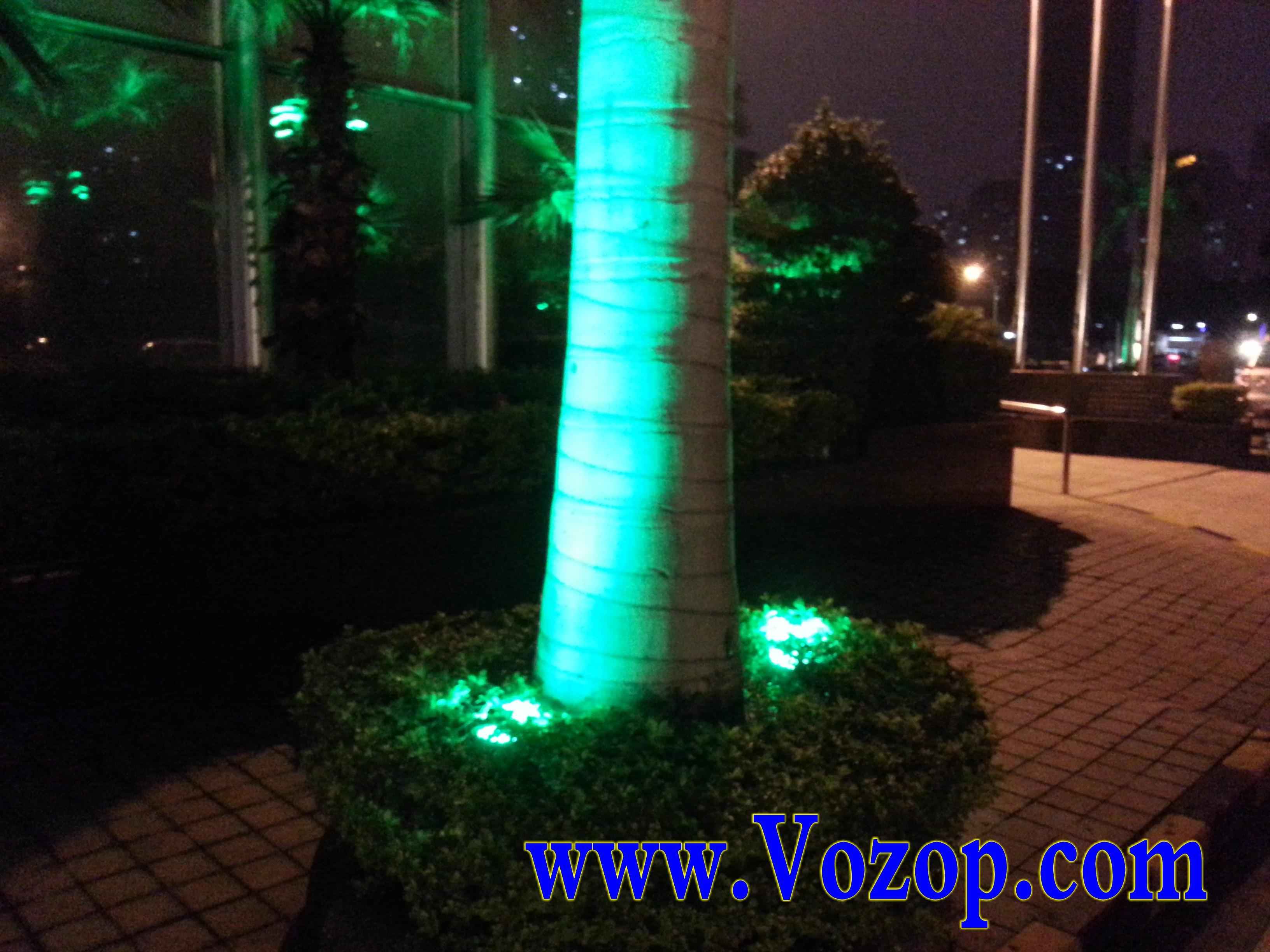 garden_LED_Lights_using_for_garden_lighting