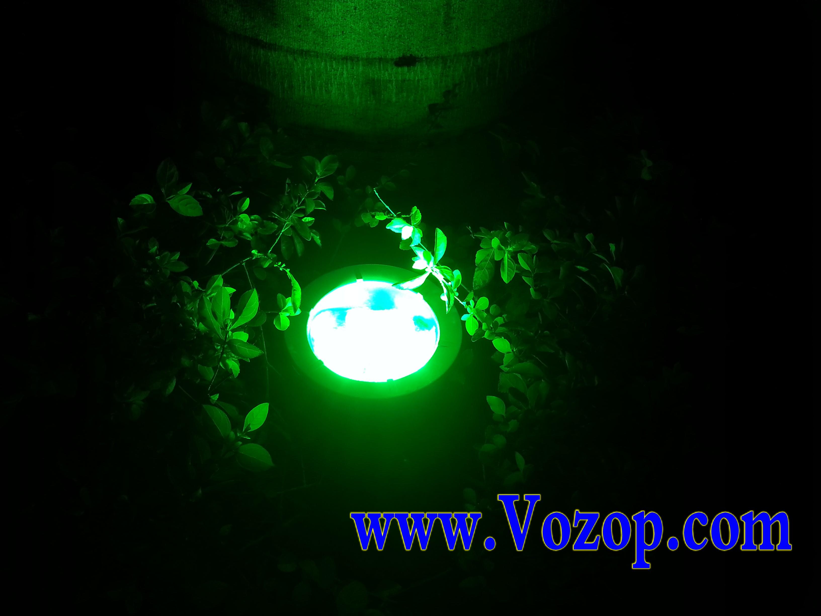 garden_LED_Lights_using_for_garden_lighting_supplier
