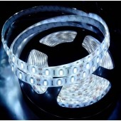5 Meters 5630 SMD 300 LEDs DC 12V 6500K White LED Light Strip